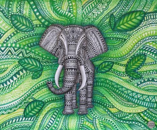 elefante em zentangle - Pesquisa Google