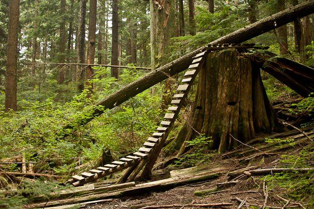 Oak Mountain Bike Trails