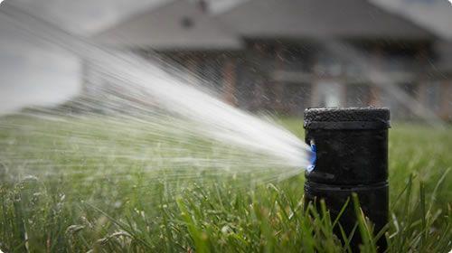 Hunter Vs Rainbird Comparsion Irrigation Incorporated Call 440 935 1182 Irrigation Sprinkler Sprinkler Heads