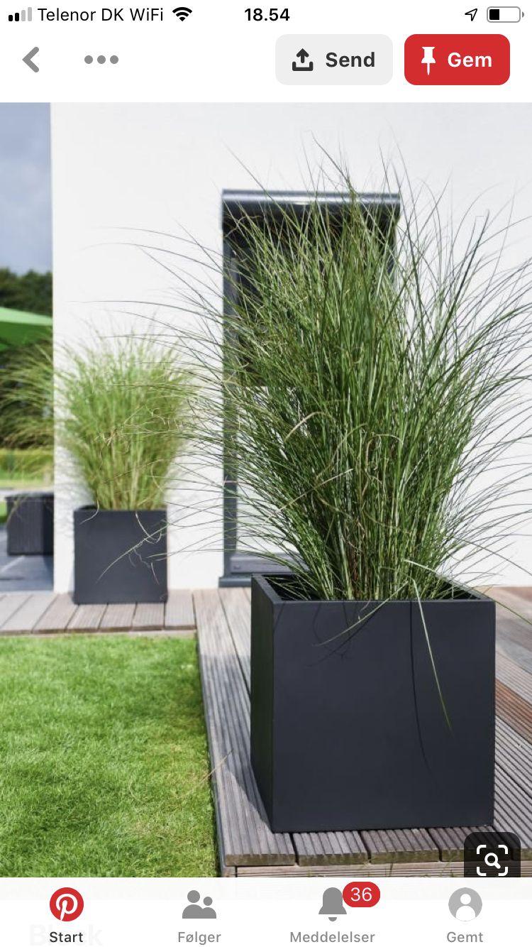 Photo of Those planters!