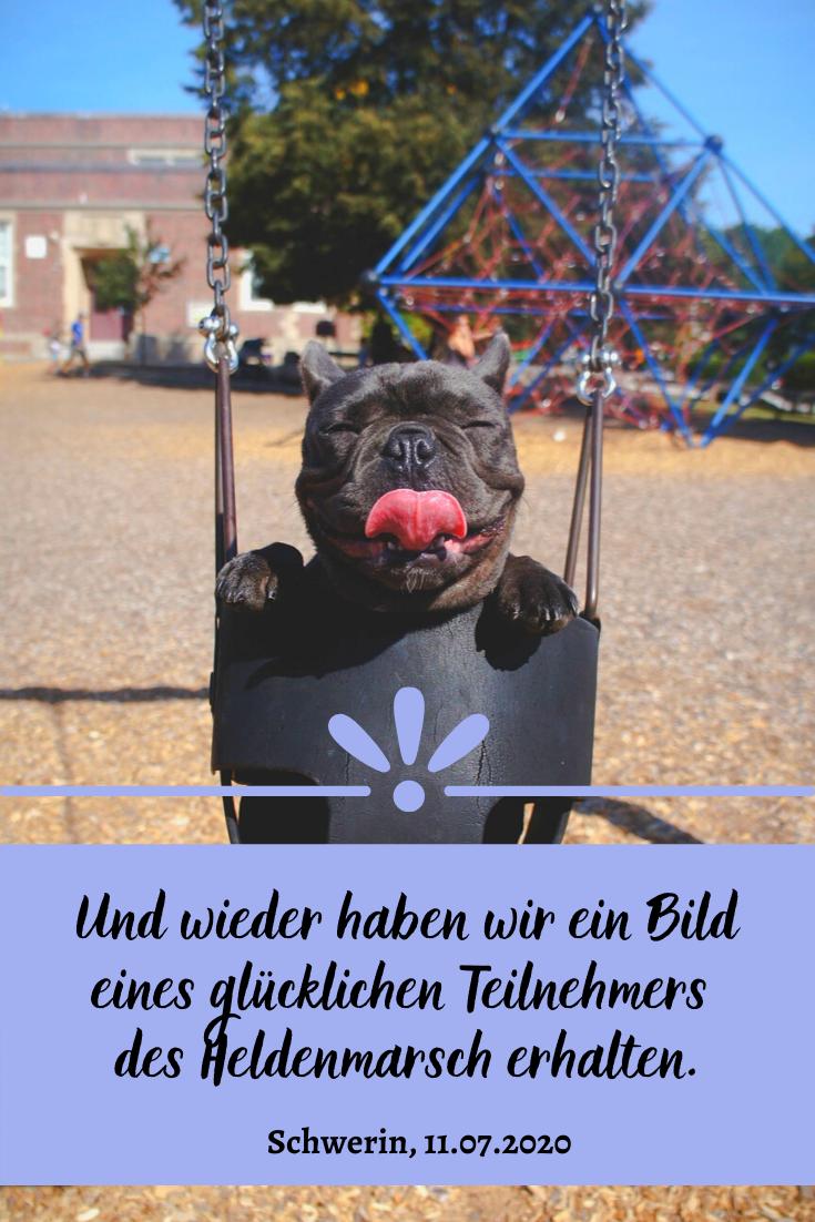 Komme Am 11 07 2020 Mit Deinem Hund Nach Schwerin Und Wandert Gemeinsam 61 Km Rund Um Den Schweriner See Ihr Spendet Damit Fur E In 2020 Schwerin Schweriner See Hunde