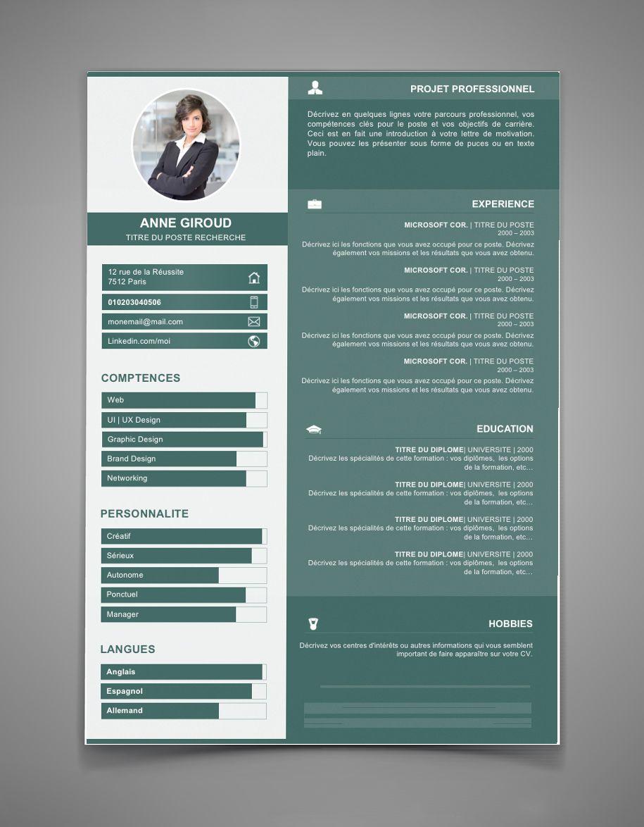 Cv Par Competence Cv 57 Maxi Cv Exemple Cv Modele Cv Cv Inspiration