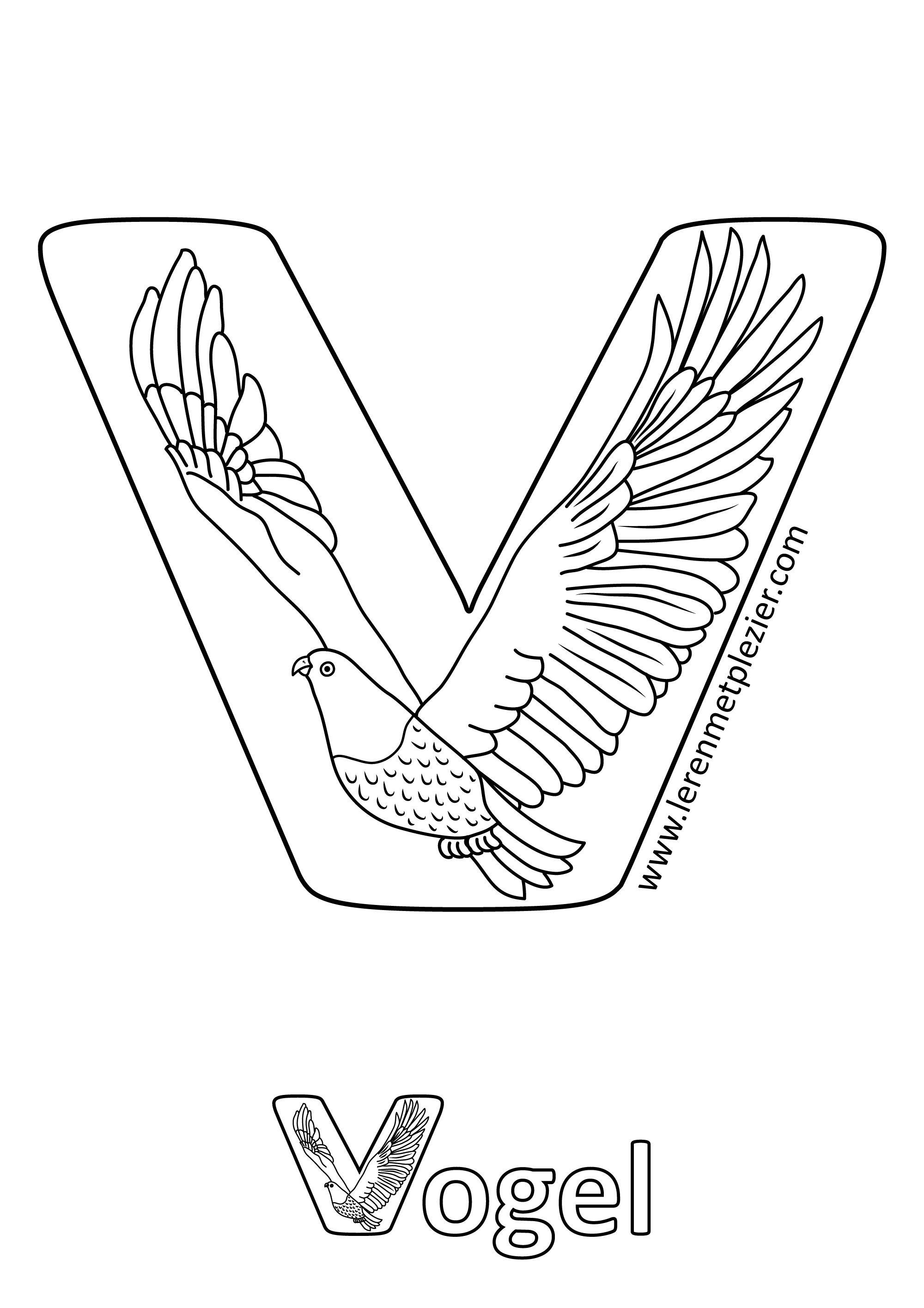 Letter V Op Basis Van Geheugensteuntjes Voor Het Abc Vogel Het Symbool Van De Vrijheid En Wat Merkwaardig Is Is Dat Die Twe Abc Letters Cards