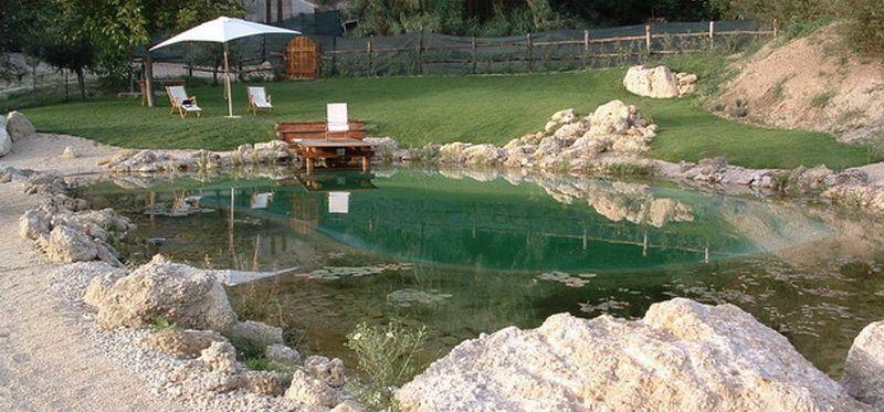 Agriturismo la farfalla ri vicino roma con biopiscina - Agriturismo con piscina vicino roma ...