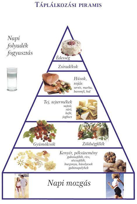 fogyás táplálkozási piramis