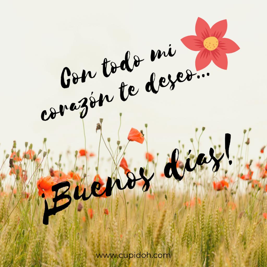 Mensajes De Buenos Días Para Alguien Especial Cupidohcom