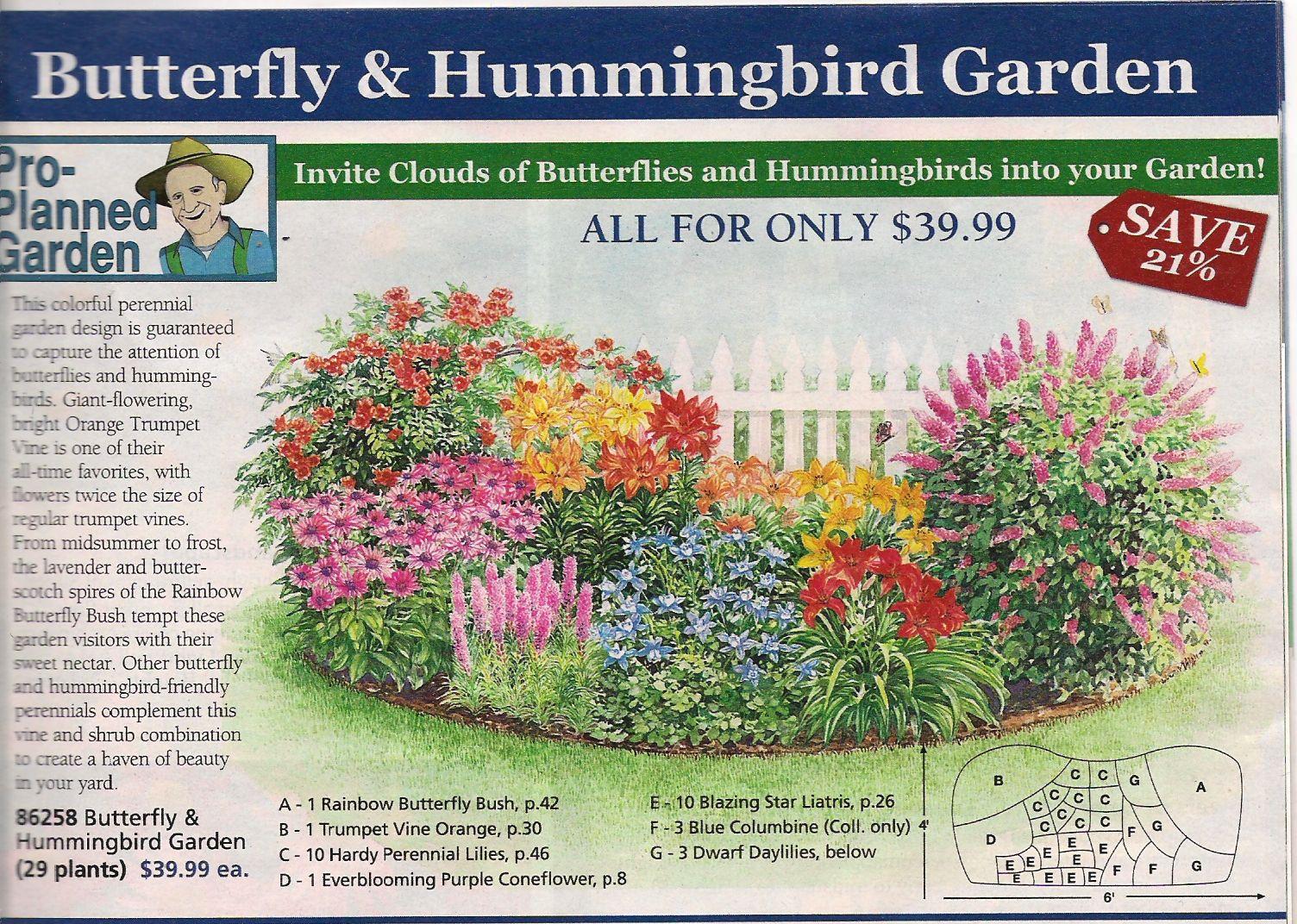 Garden plan from Michigan Bulb Co. for a butterfly garden, east ...