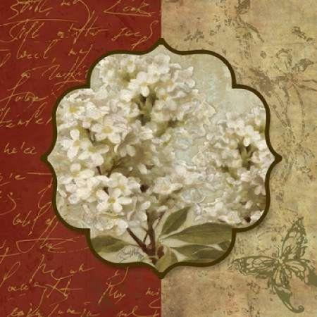 Tuscan Glimpse I Canvas Art - Elizabeth Medley (24 x 24)