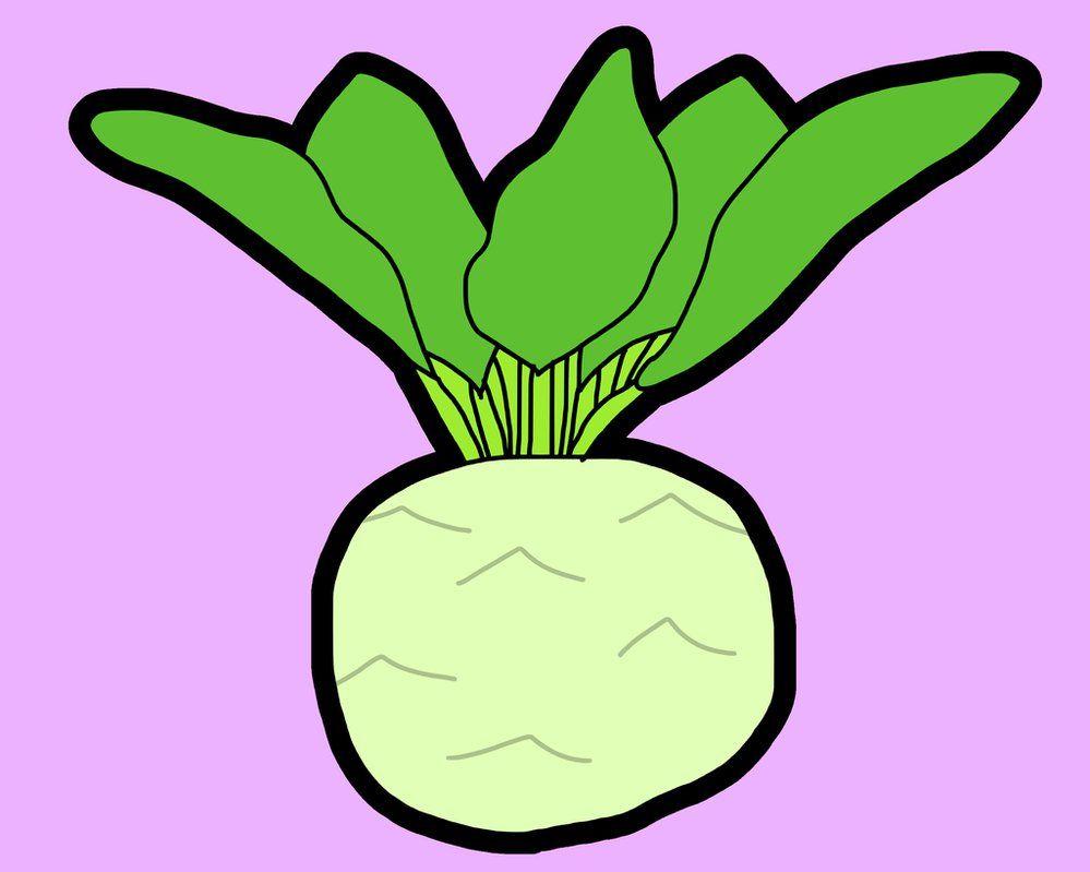 Kohlrabi / #QSXGA #Food #Vegetable