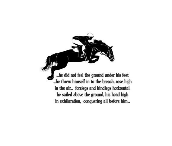 If you have ever sailed over a jump you know the trill of flying. If you have a horse that lives to fly then this quote says it all. Sailing over