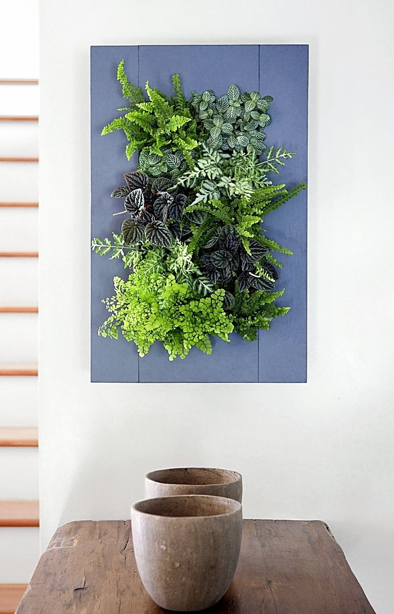 Living Wall Vertical Planter Quot Buttermilk Quot Wood Frame Kit