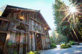 23 Woodsy Wedding Venues in Northern California ...