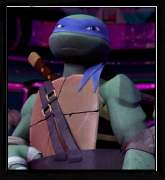 Leo 1 Tmnt Tmnt 2012 Ninja Turtles