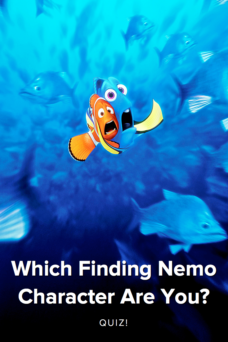 finding nemo marlin and dory relationship test