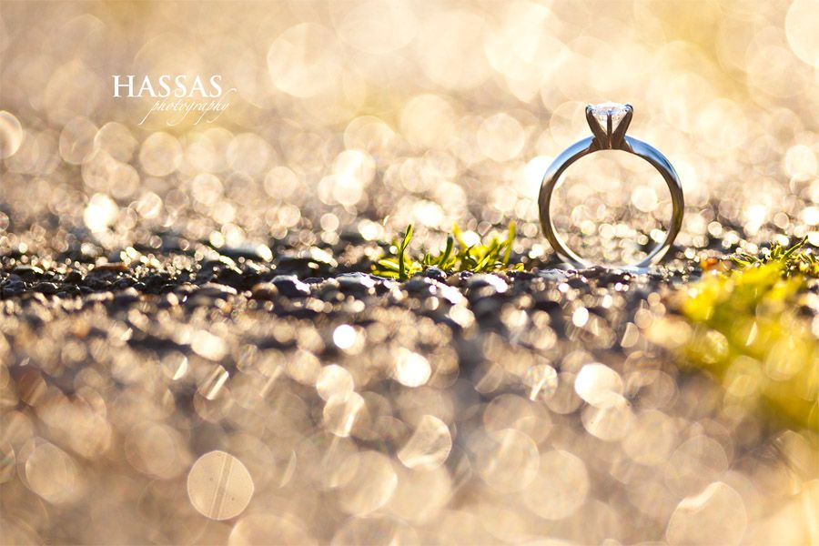 ring / sam hassas photography