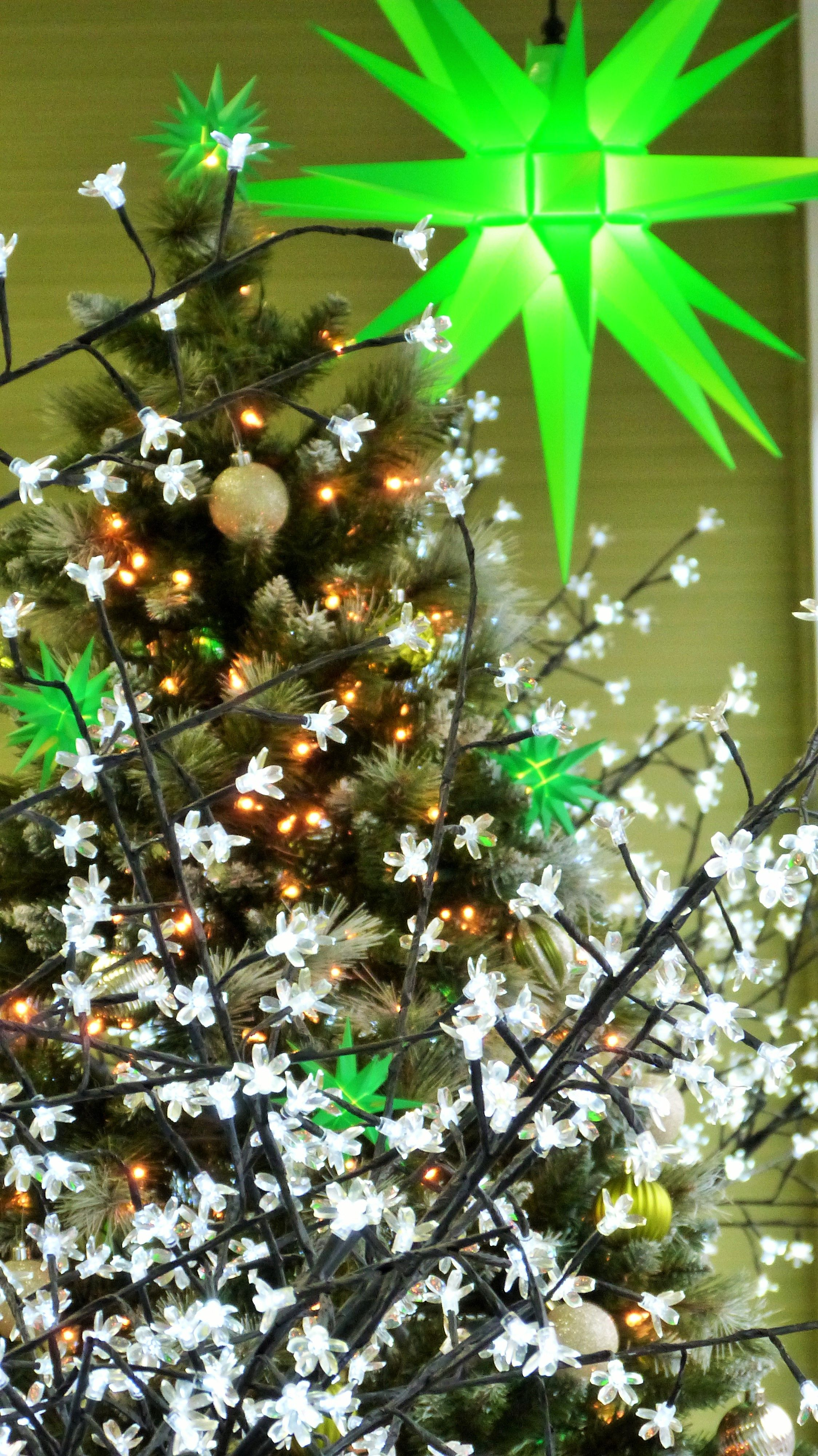 Td Bank Christmas Eve Hours.Green Christmas Tree Decoration With A Herrnhut Star Chain