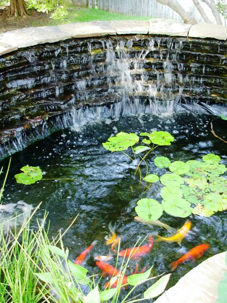 Delicieux Koi Ponds Gallery | Sublime Water Garden Construction | Pond Depot Water  Garden Supplies | Dallas   Fort Worth Texas