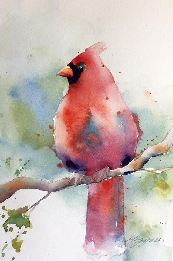 Red Cardinal Watercolor Watercolor Art Watercolor Paintings