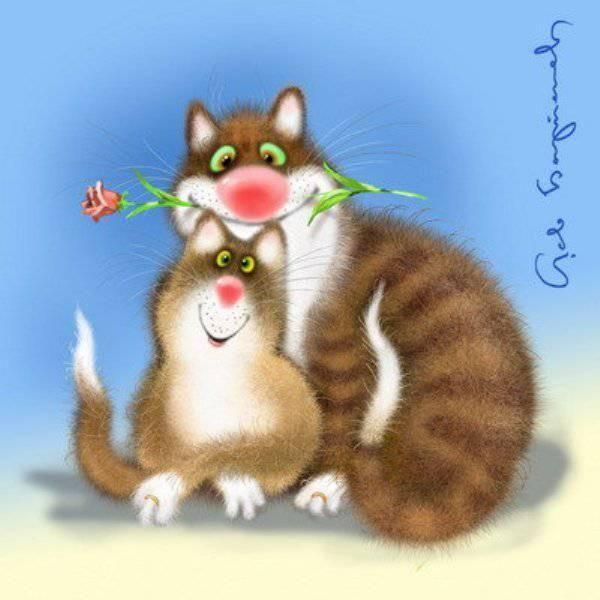 Смешные кошки открытка