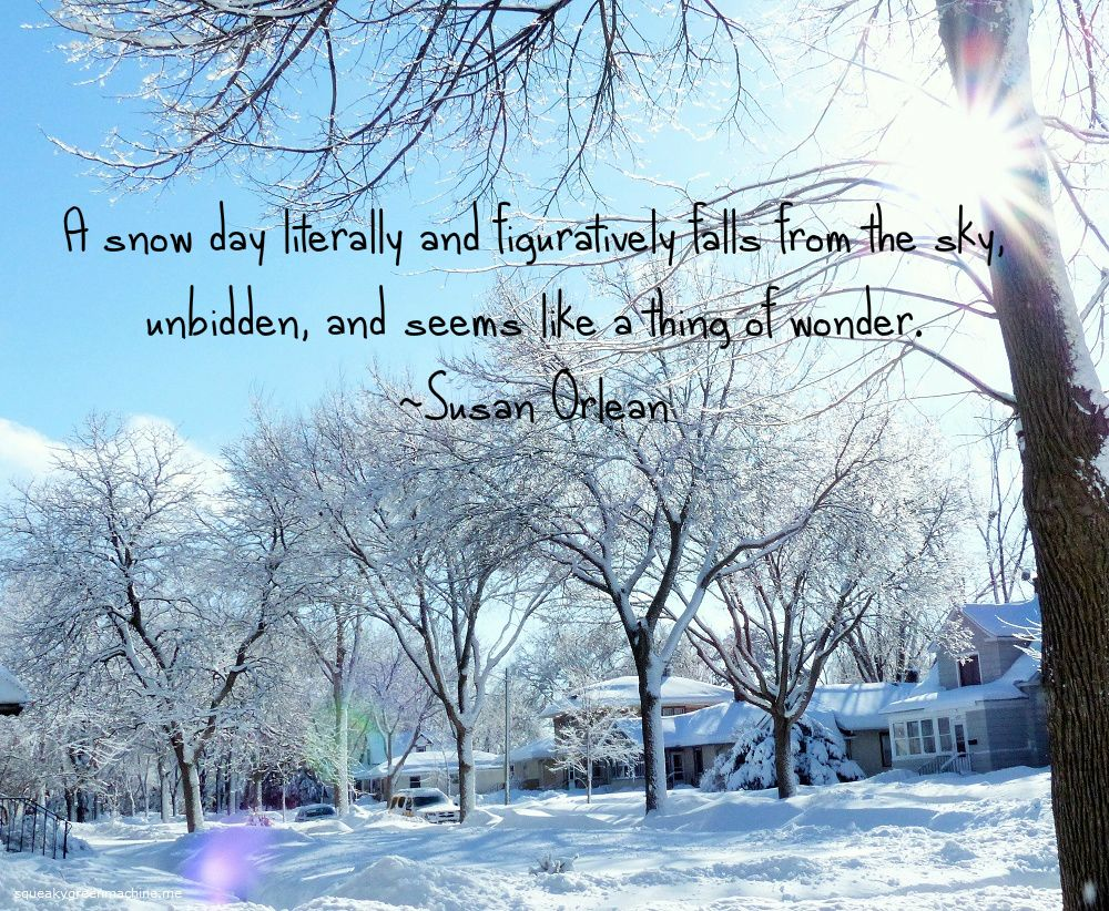 Snow Days Squeaky Green Machine Snow Day Funny Winter Quotes Snow Quotes