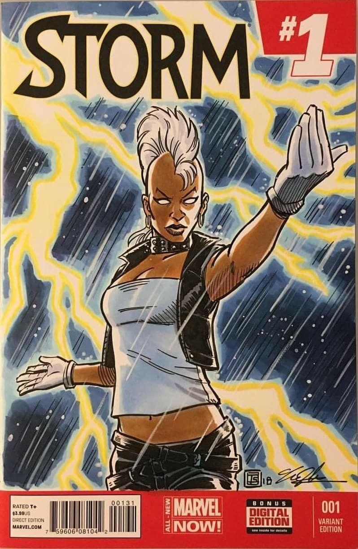 Pin By Ruiha Maiava On Storm Marvel Stuff Storm Marvel Female Superhero Female Comic Characters