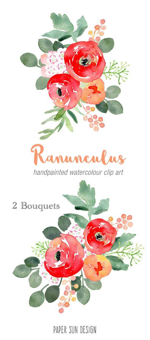 Watercolour Clip Art - Ranunculus Two Bouquets, red flowers, bouquet ...