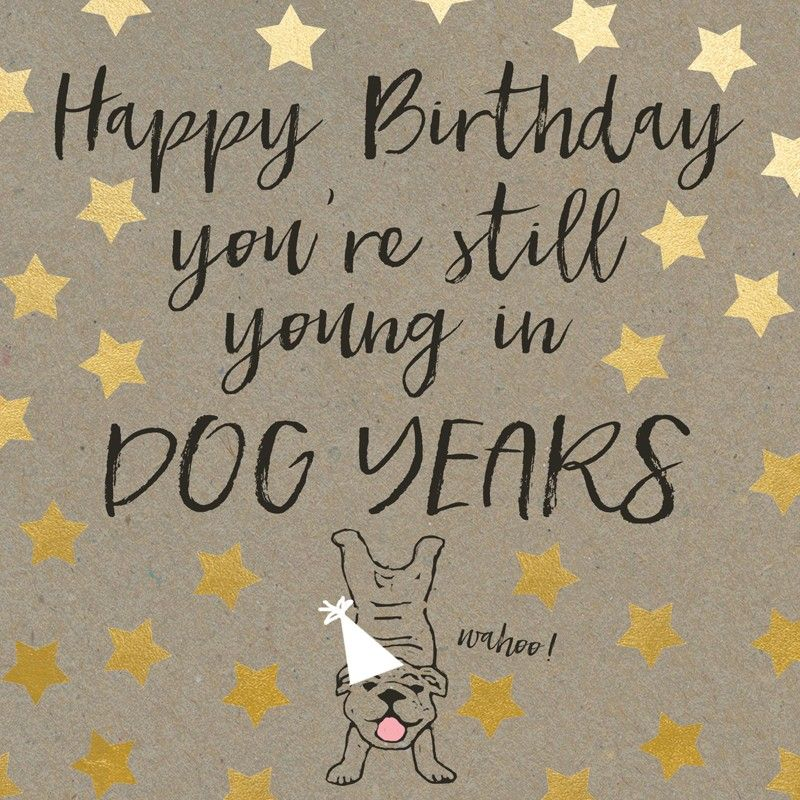 You're Still Young In Dog Years