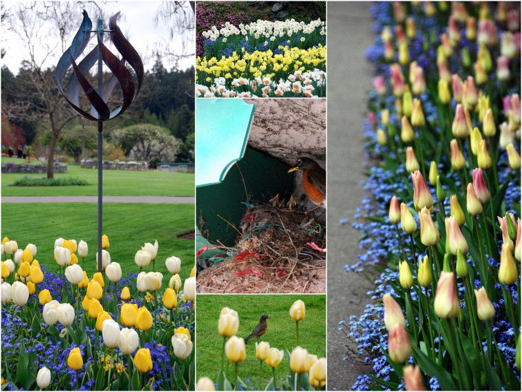 Springing Forward and Spring in Bloom at The Butchart