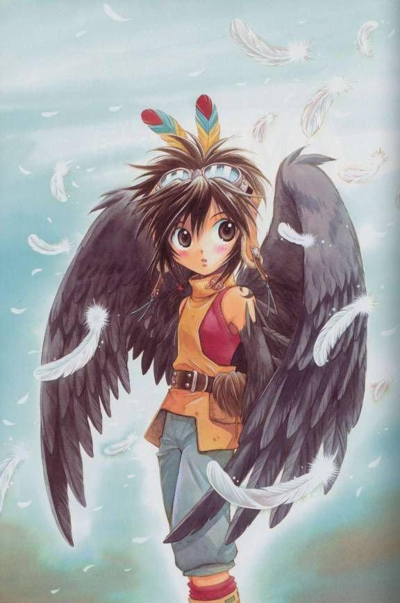 Cooro Is A Crow Anima And The Main Character Of Series His Marking Located On Each