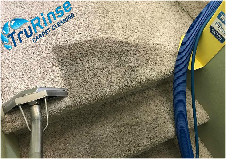 Provides The Best Carpet Protector Service Around Best Carpet