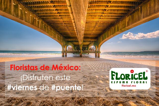 Espuma floral (@espumafloral) | Twitter De descanso o de actividad, esperamos que los #floristas disfruten este puente en México. #FLORICEL #floralfoam