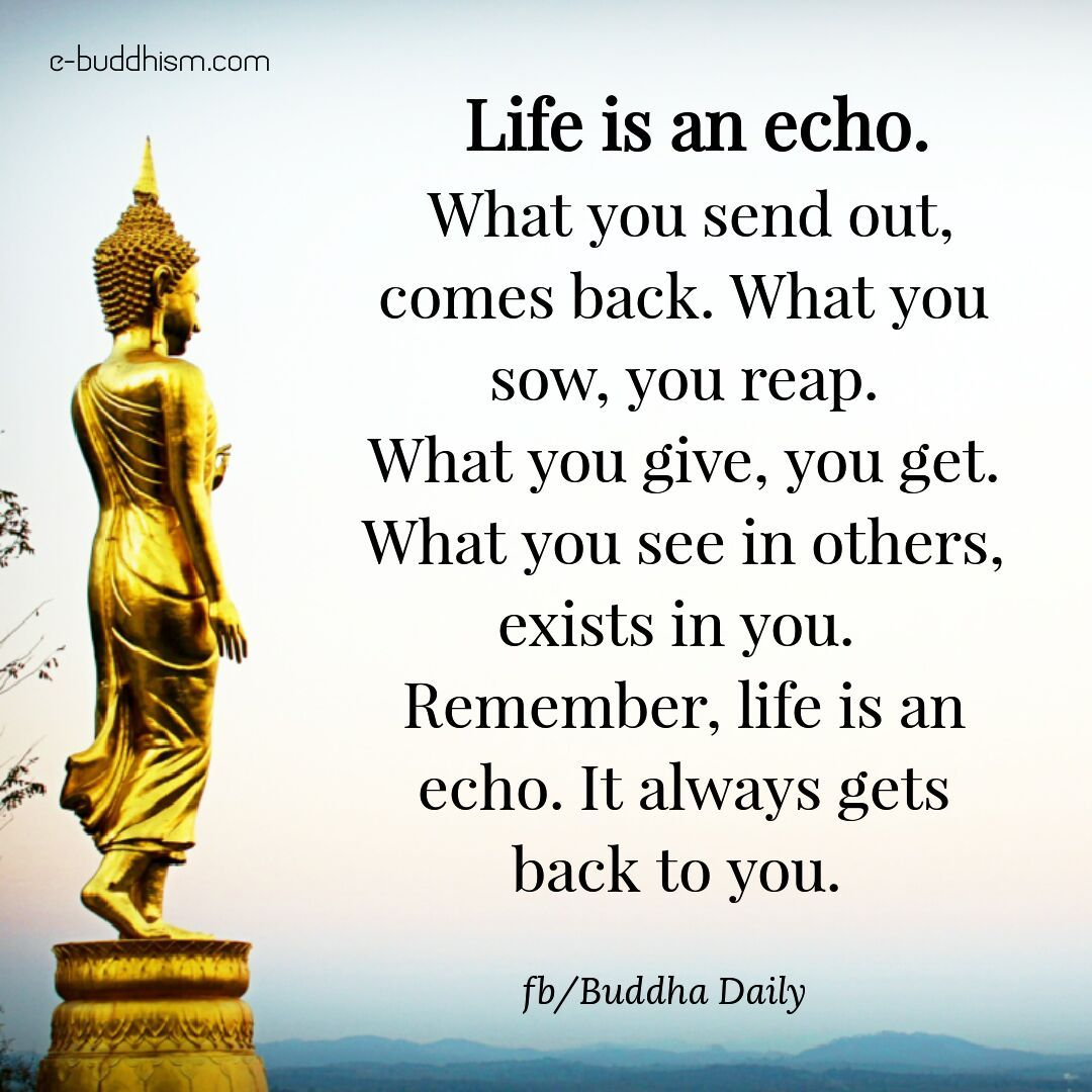 Life Is An Echo Buddhism Quote Buddha Quotes Inspirational