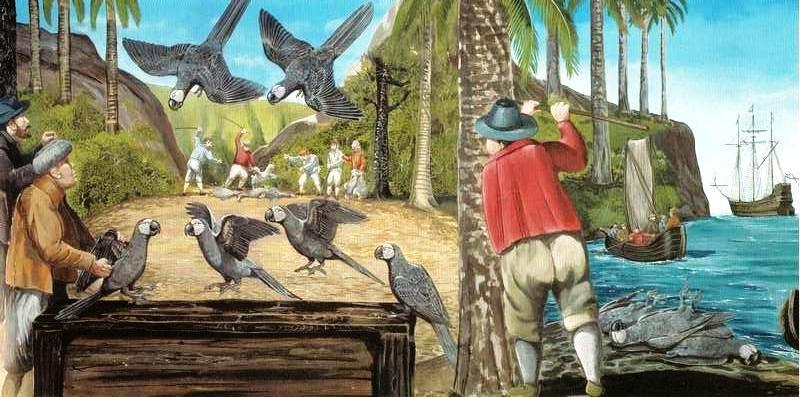 Mascarene grey parakeet