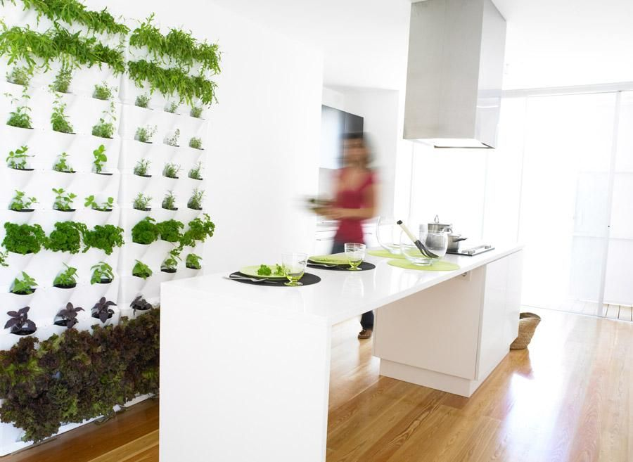 Explore Wall Herb Gardens, Kitchen Herb Gardens, And More!
