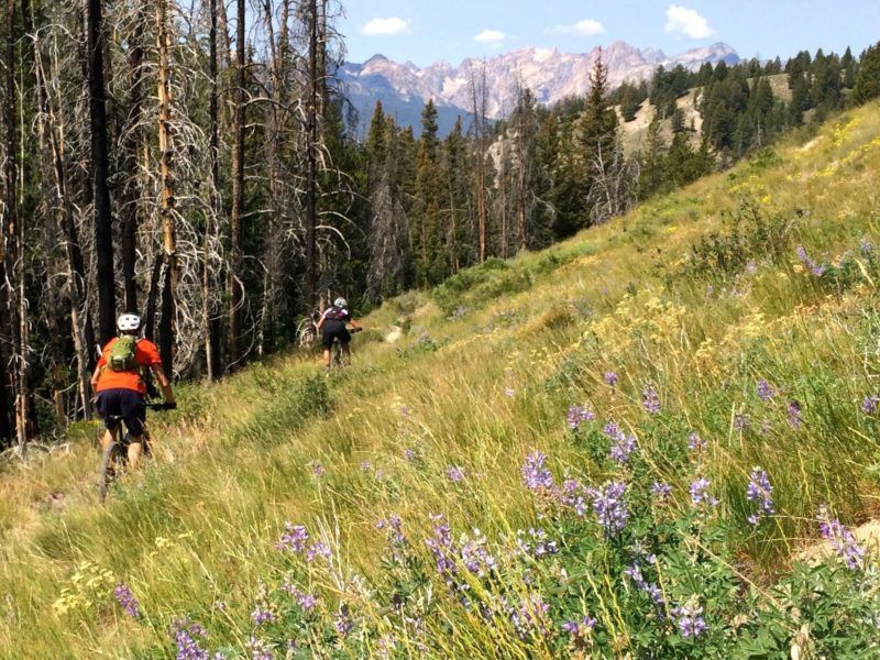 5 Idaho Mountain Bike Rides that Shine in the Fall - Here are five of my favorite fall mountain bike rides throughout the Gem State. These are wonderful rides that you can do over and over again when you're in the area.