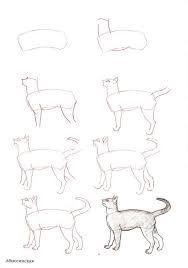 Bildergebnis für katze zeichnen