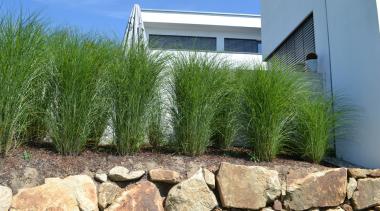 sichtschutz garten - google-suche | sichtschutz | pinterest, Garten und bauen