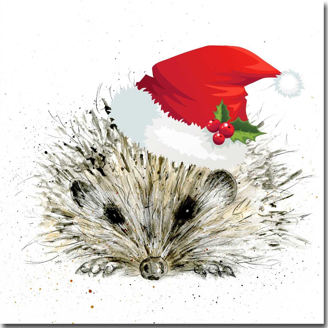 Hedgehog Charity Christmas Cards - Six Pack