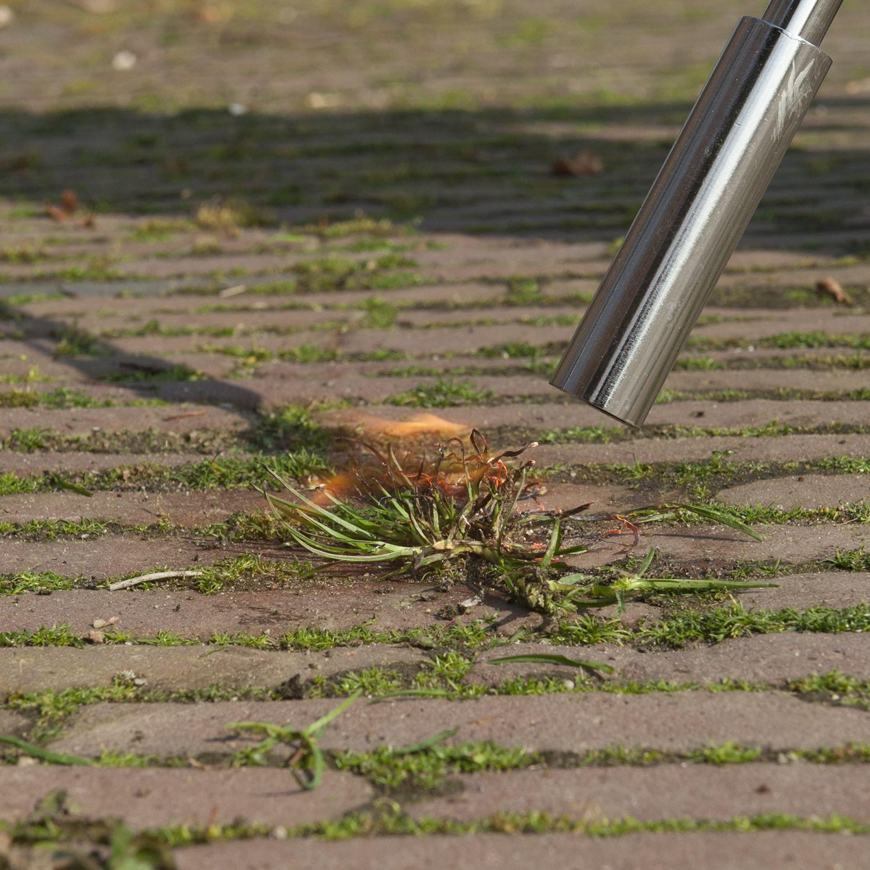 5 manieren om onkruid te verwijderen zonder chemische bestrijdingsmiddelen | Bindels Tuinen