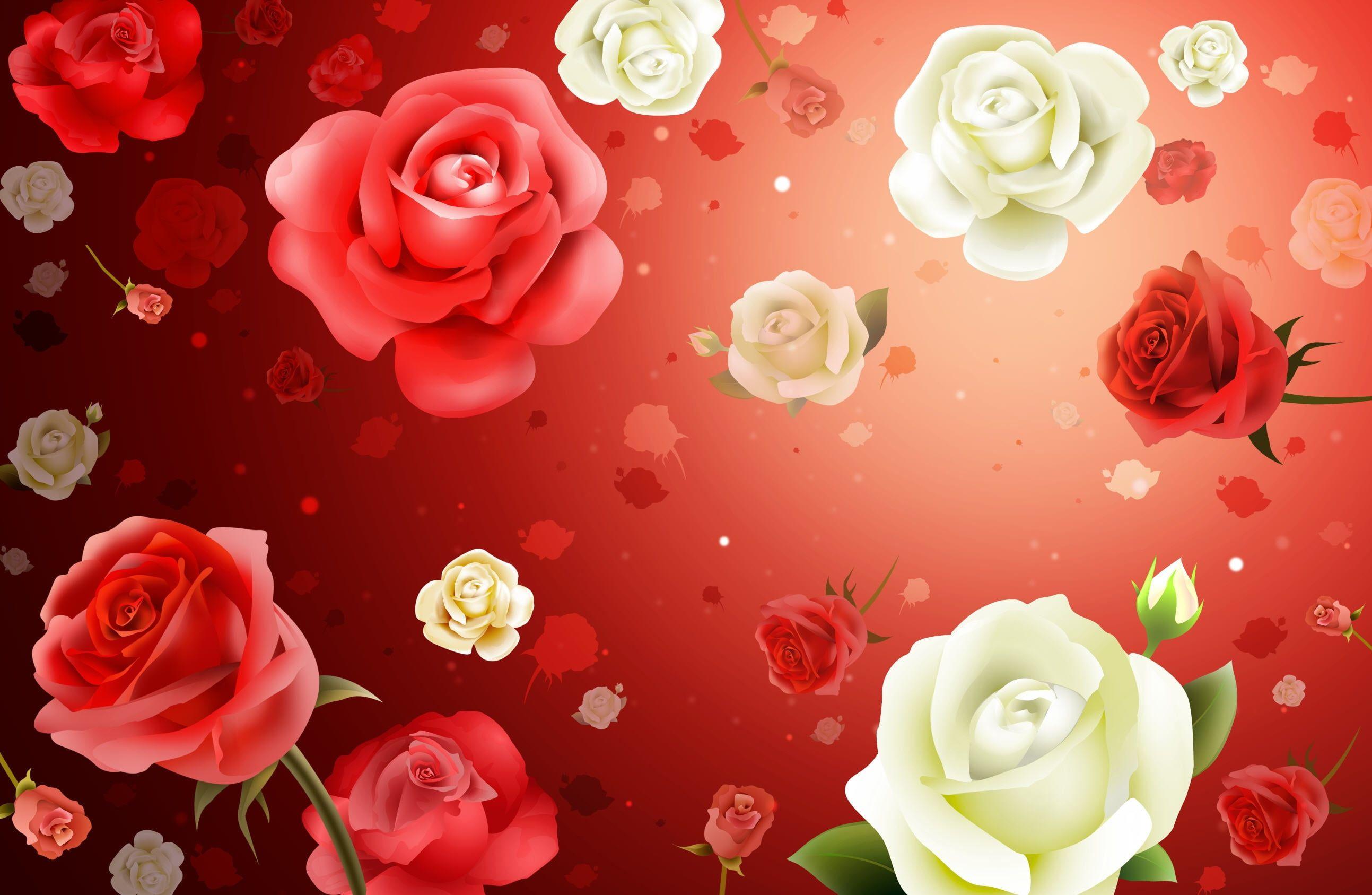 Red And White Roses Vector Art Flowers Roses Background Texture 2k Wallpaper Hdwallpaper Desktop Mawar Cantik Wallpaper Bunga Mawar Ungu