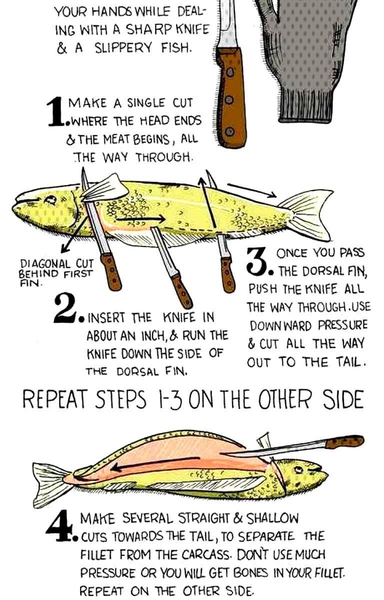 60 fishing tips and tricks hacks
