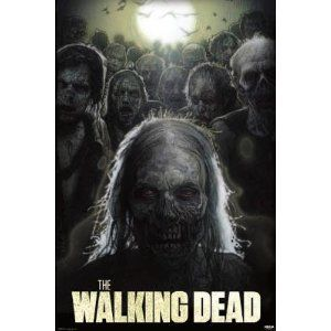The Walking Dead is awesome!  Even if the first half of season 2 was DAMN slow....