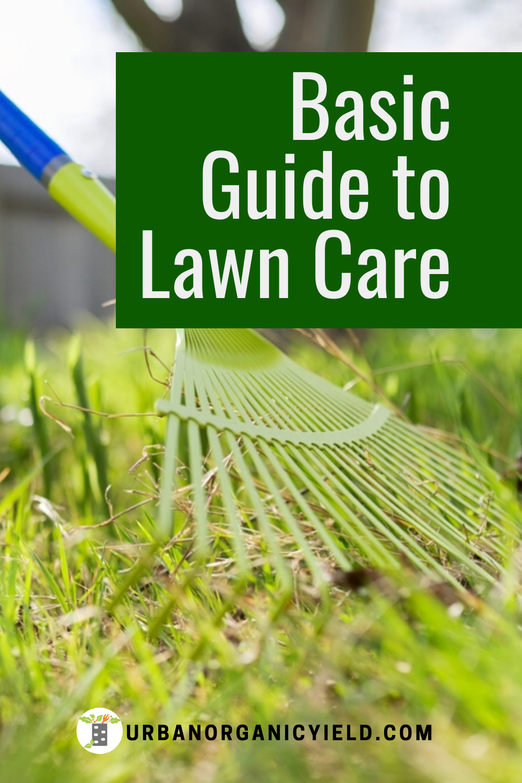 Pin On Lawn Care Gardening