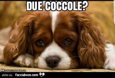 Due coccole?
