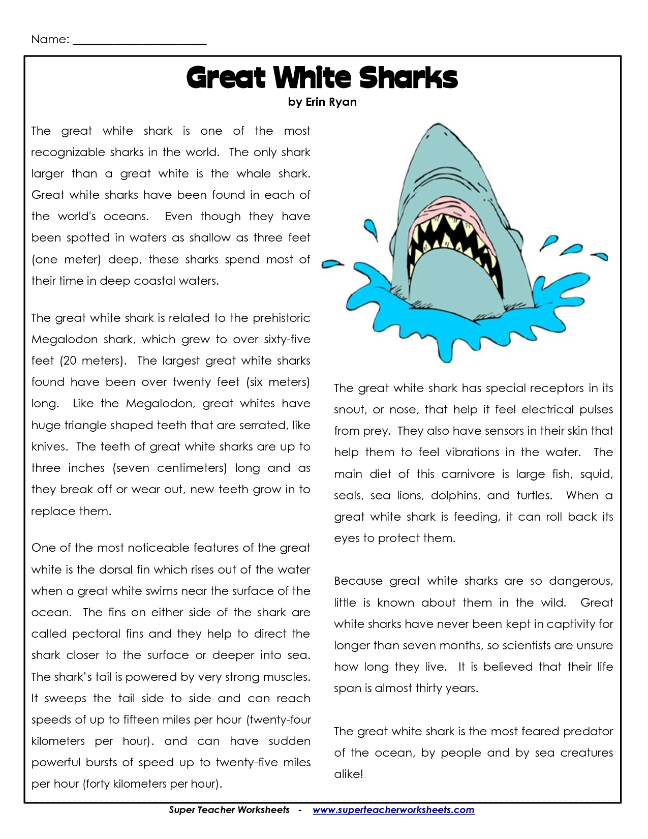 Shark Alphabet Worksheets