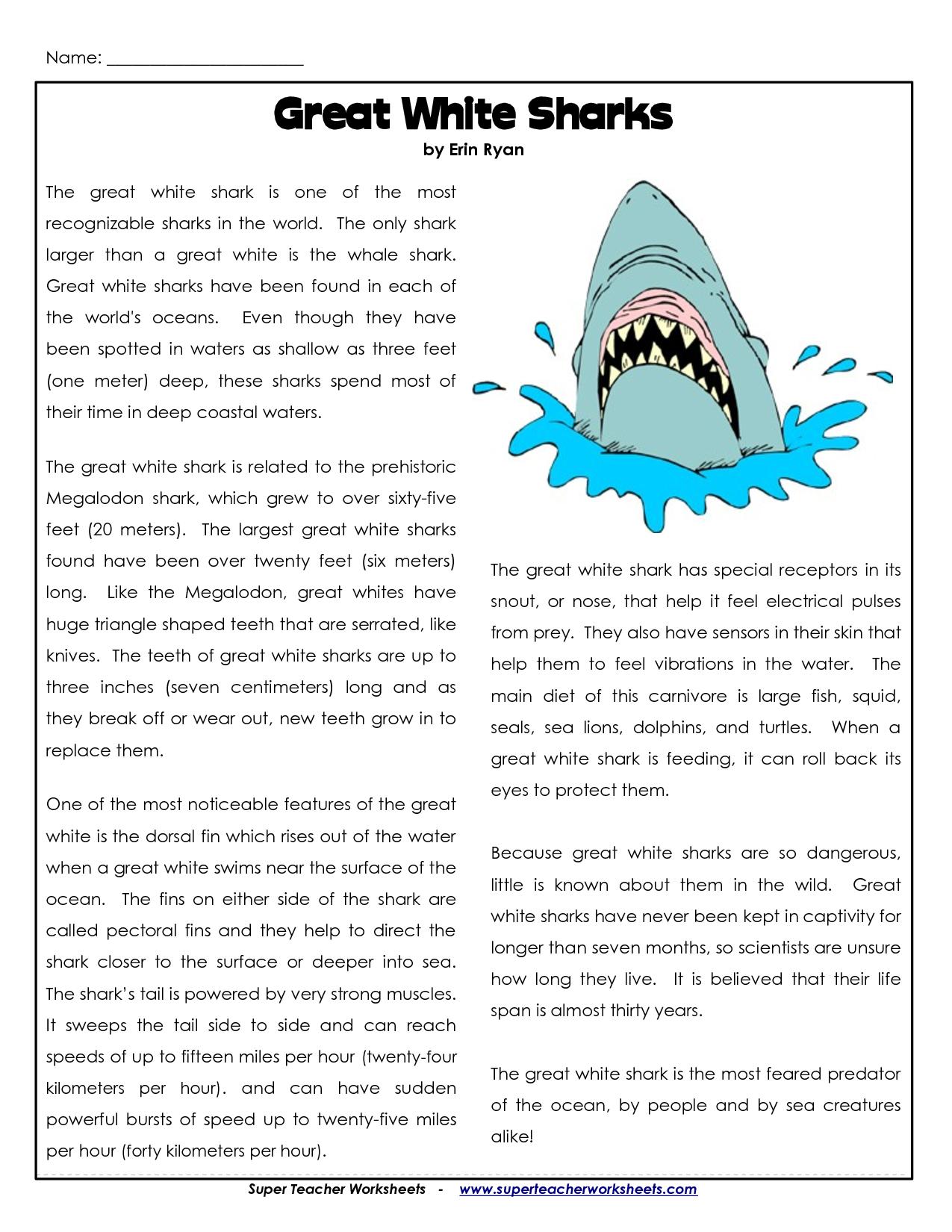 Shark Science Worksheets Science Worksheets Free Science Worksheets Learning Websites [ 1650 x 1275 Pixel ]