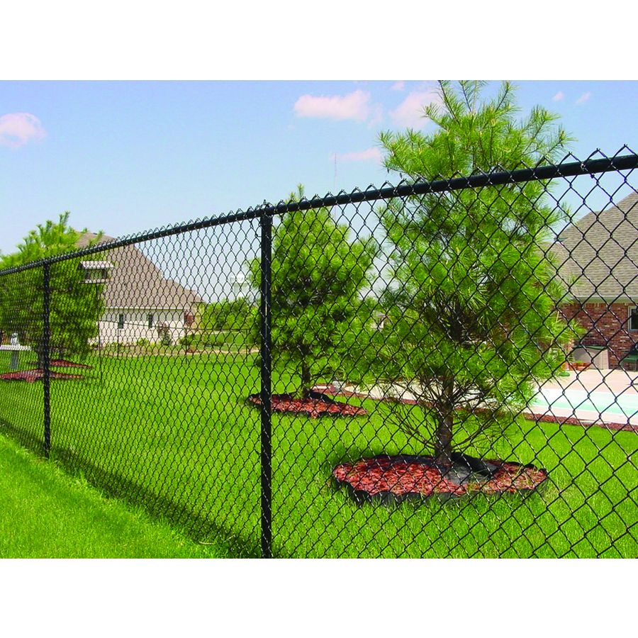 Shop 6 Ft X 50 Ft Black Galvanized Steel 9 Gauge Chain Link Fence Fabric At Lowes Com Chain Link Fence Black Chain Link Fence Fence Fabric
