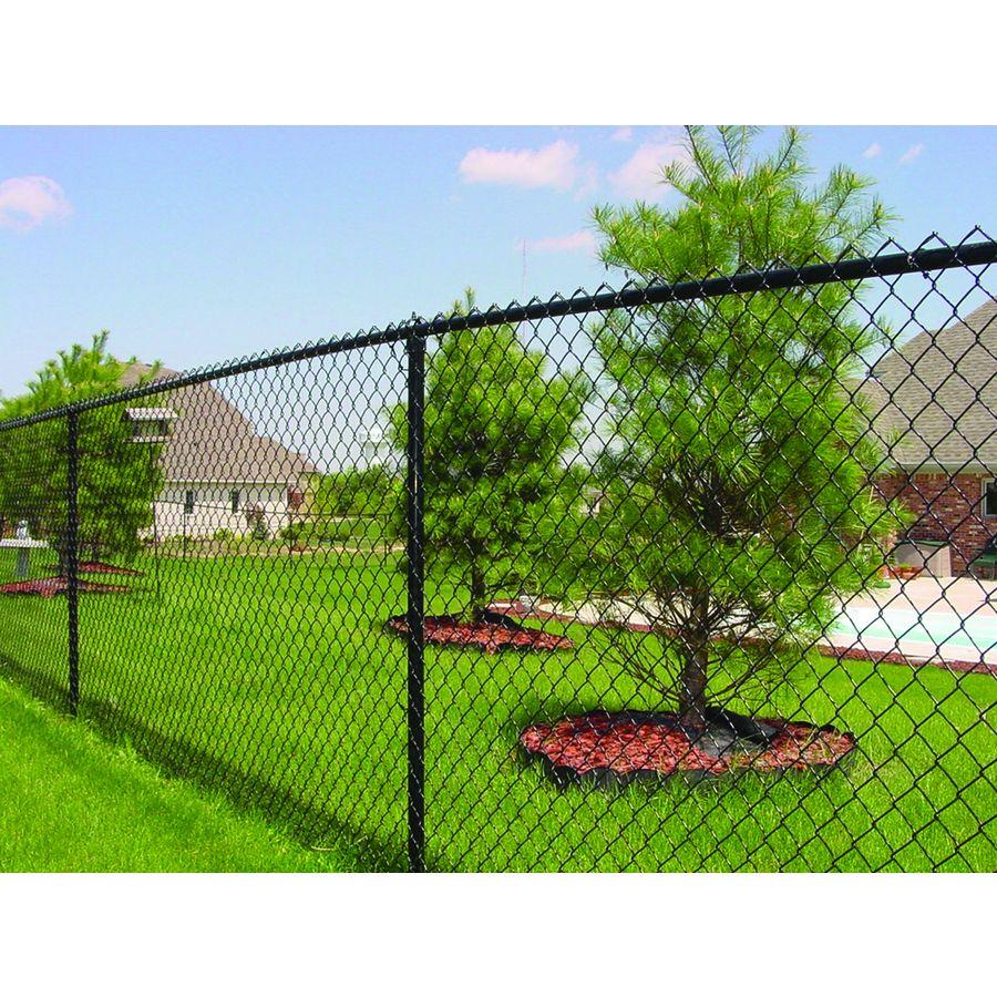 Shop 6 Ft X 50 Ft Black Galvanized Steel 9 Gauge Chain Link Fence