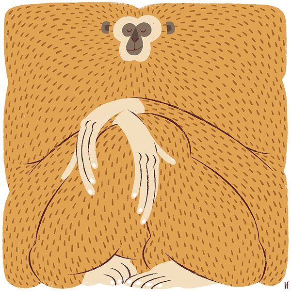 Gibbon In 2020 Monkey Illustration Illustration Animal Illustration