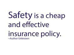 Safety Is A Cheap And Effective Insurance Policy Anonymous Quote